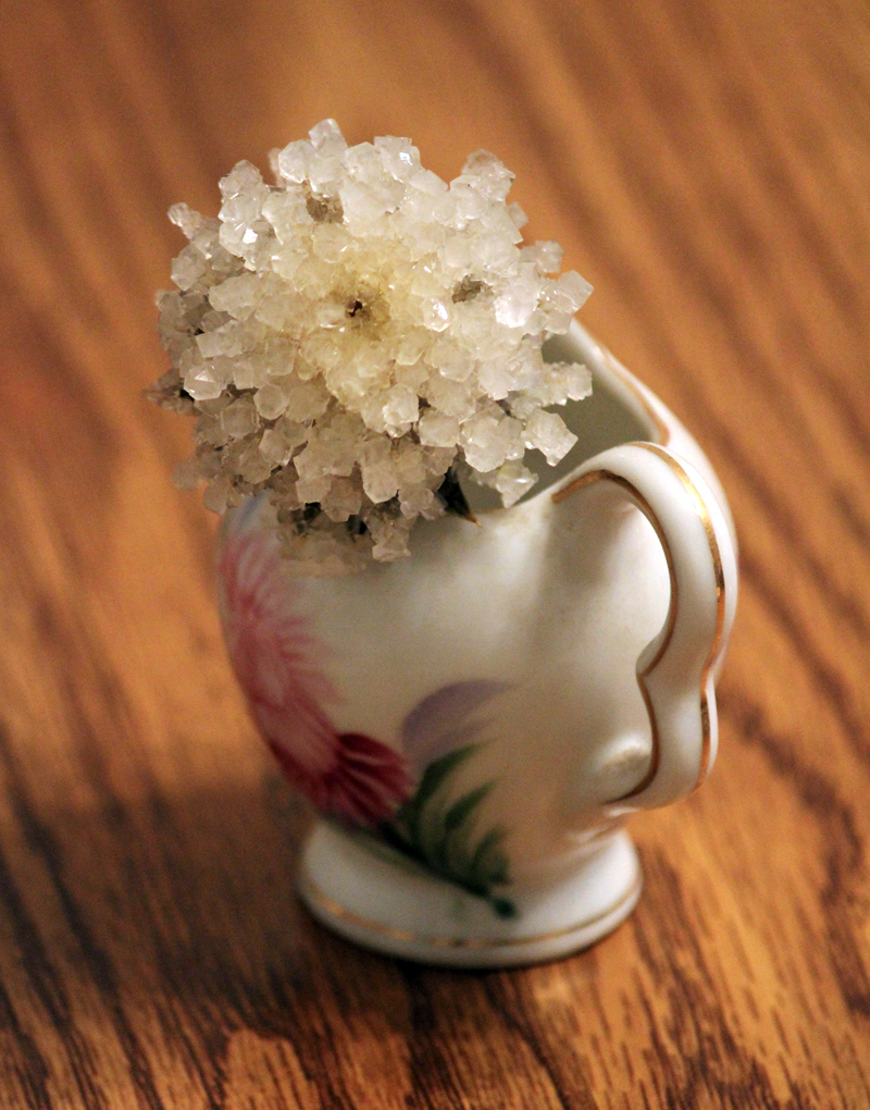 pics How to Crystallize Flowers