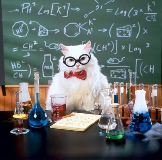 Chemistry jokes and puns chemistry cat isnt the only one who knows funny chemistry jokes people do urtaz