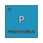 Color element cell for phosphorus.