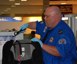 TSA Screening a Bag (US Department of Homeland Security)