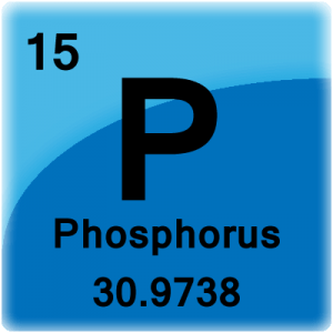 Element cell for Phosphorus