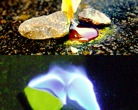 Melting and Burning Sulfur