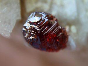 Spessartine Garnet Crystal (ButtShark)
