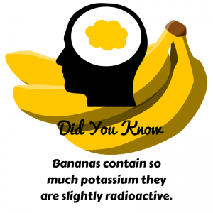Weird Science Fact: Bananas Are Slightly Radioactive