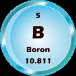 005 - Boron Button