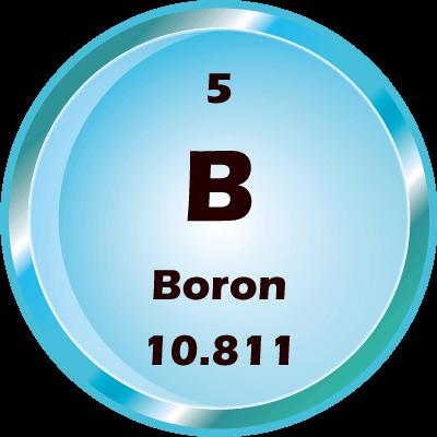 boron project
