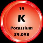 019 - Potassium Button
