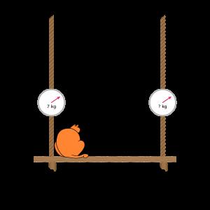 Equilibrium Cat 2
