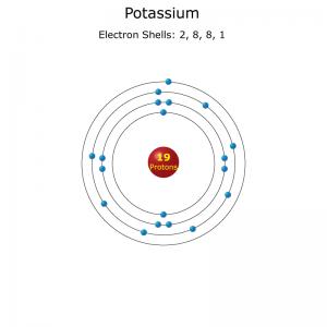 Potassium atom