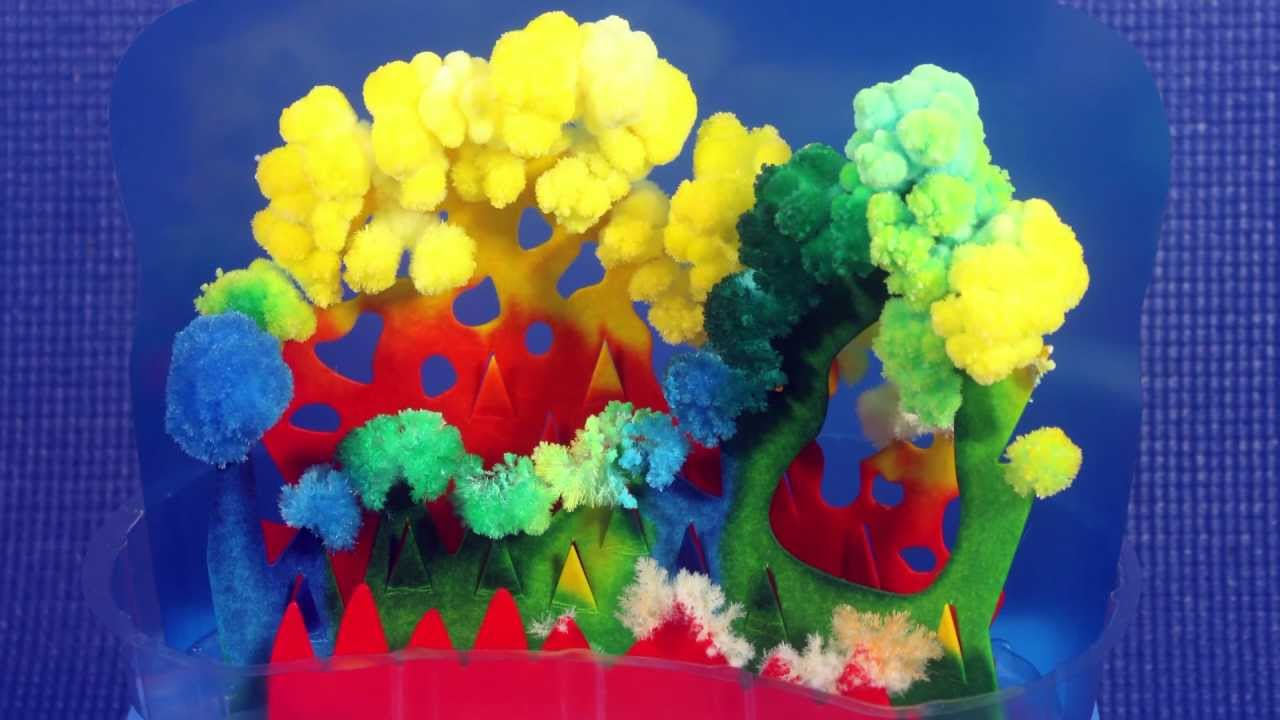 Coral Crystal Garden Using Laundry Bluing
