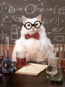 Chemistry Cat, like all other felines, needs taurine in his diet. Insufficient taurine leads to blindness, loss of fur, tooth decay, and eventually death.