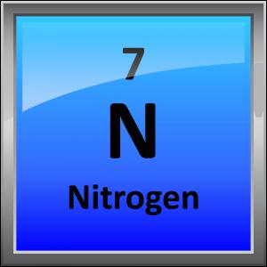 007-Nitrogen
