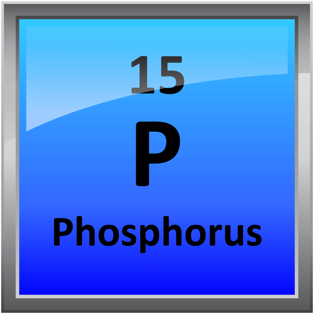 015-Phosphorus - Science Notes and Projects