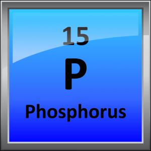 015-Phosphorus