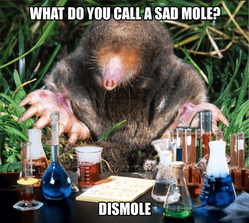 Chemistry Mole is Dismole