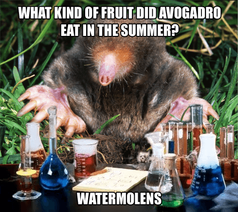 Chemistry Mole and Summer Fruit
