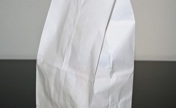 White Paper Bag (Jeffrey Beall)