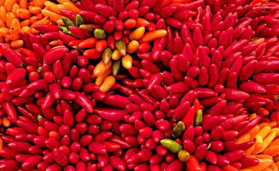 Hot Peppers (Ricardo Gomez Angel)