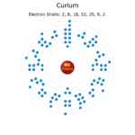 Electron Levels of a Curium Atom