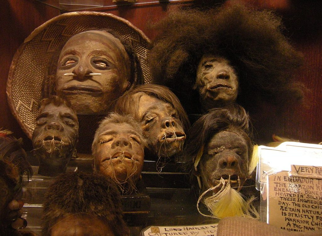 Shrunken heads in the permanent collection of Ye Olde Curiosity Shop, Seattle, Washington. (Joe Mabel)