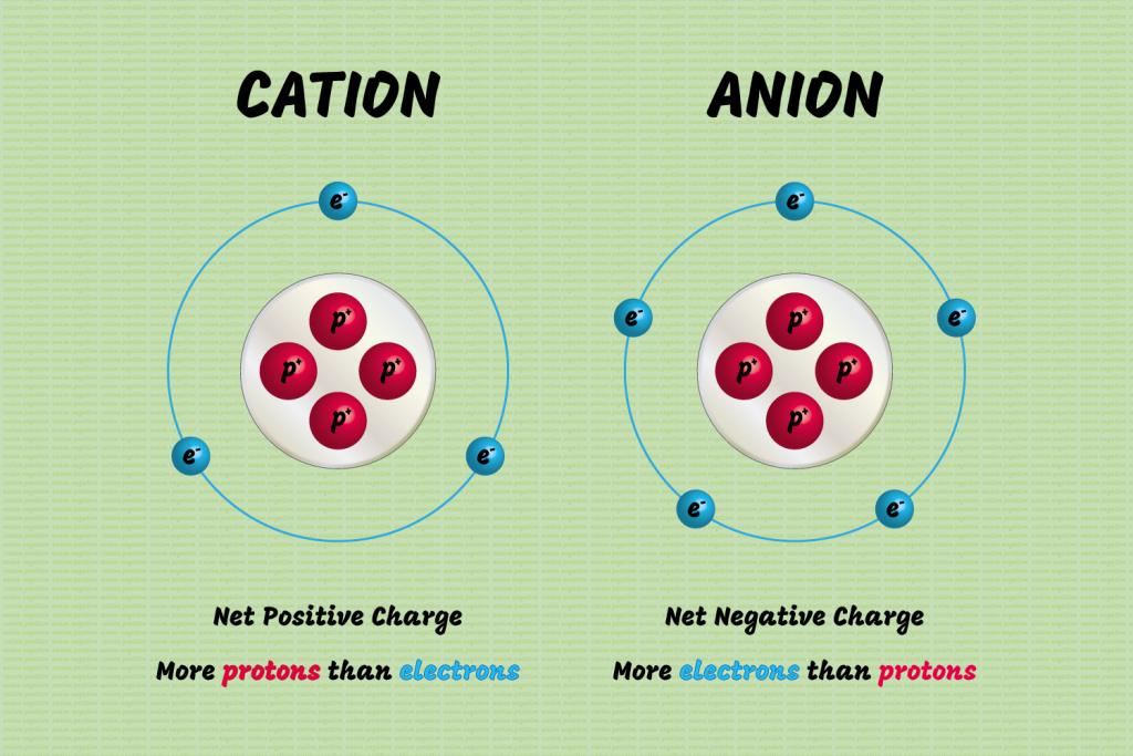 Difference between cations and anions