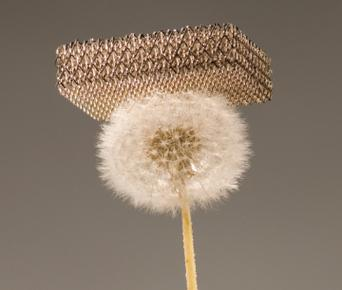 Metallic microlattice is so light that a dandelion head can support it without being crushed.