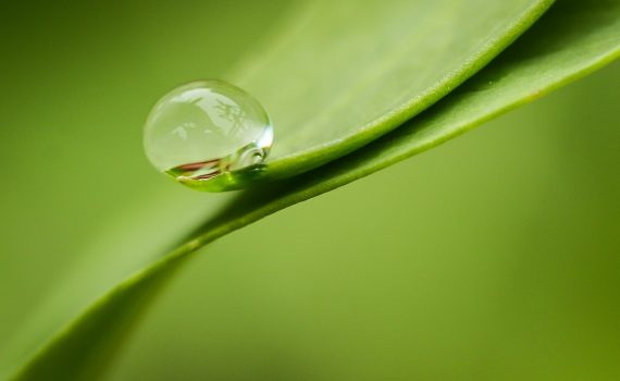 There are many molecules and atoms in a drop of water.