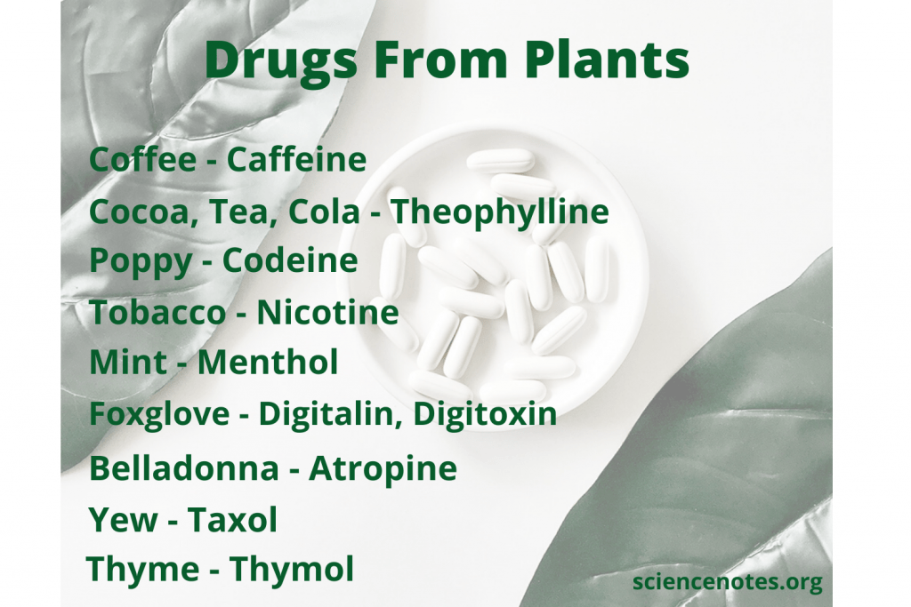 Many drugs are derived from plants.