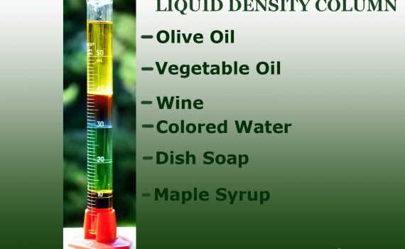 Use a graduated cylinder or narrow glass to illustrate the different density values of common liquids.