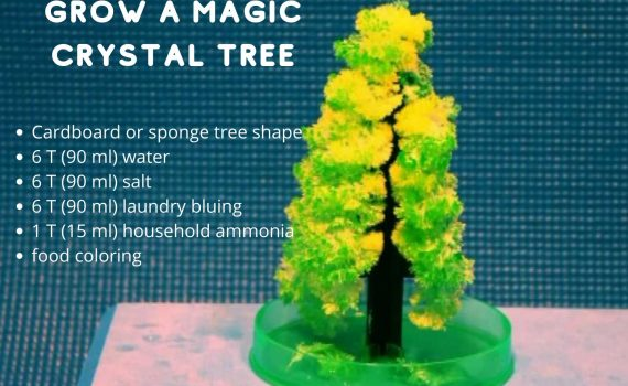It's easy to grow a magic crystal Christmas tree using simple chemicals.