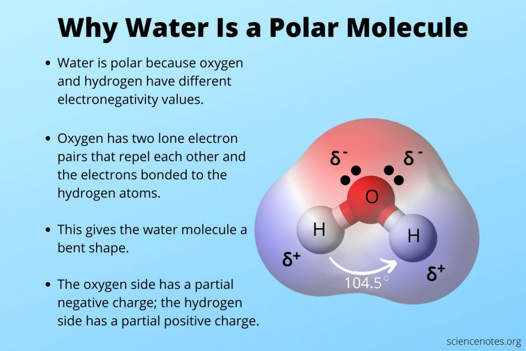 Why Water Is a Polar Molecule