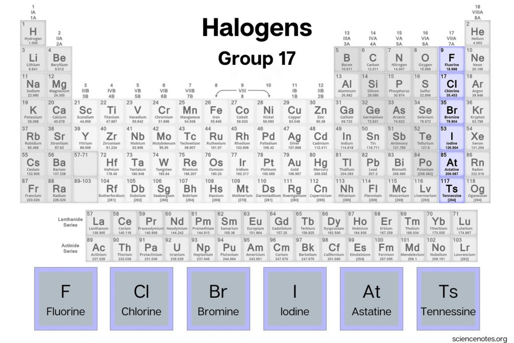 Halogens on the Periodic Table