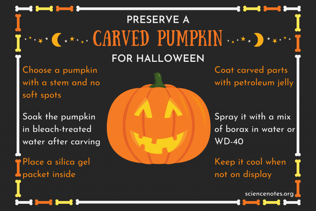 How to Preserve a Carved Pumpkin