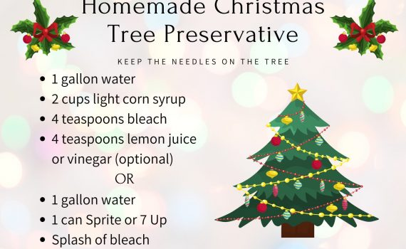 How to Make Homemade Christmas Tree Preservative