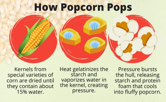 How Popcorn Pops