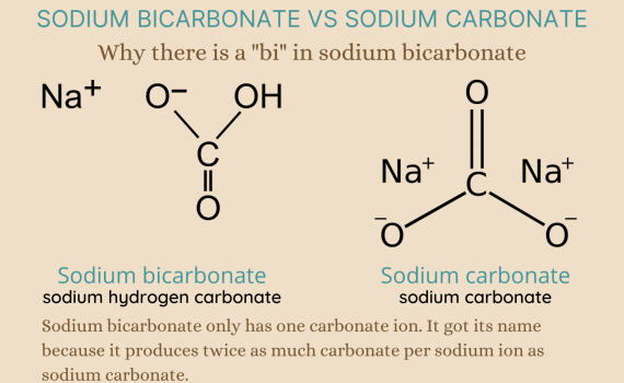 Why there is a bi in sodium bicarbonate
