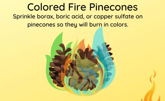 Make Colored Fire Pinecones