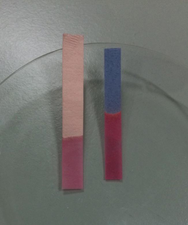 Blue Litmus Turns Red in Acid