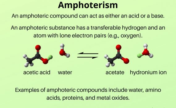 Amphoterism-Amphoteric Definition