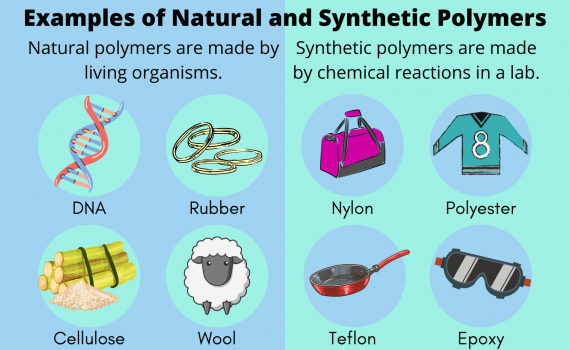 Examples of Natural and Synthetic Polymers